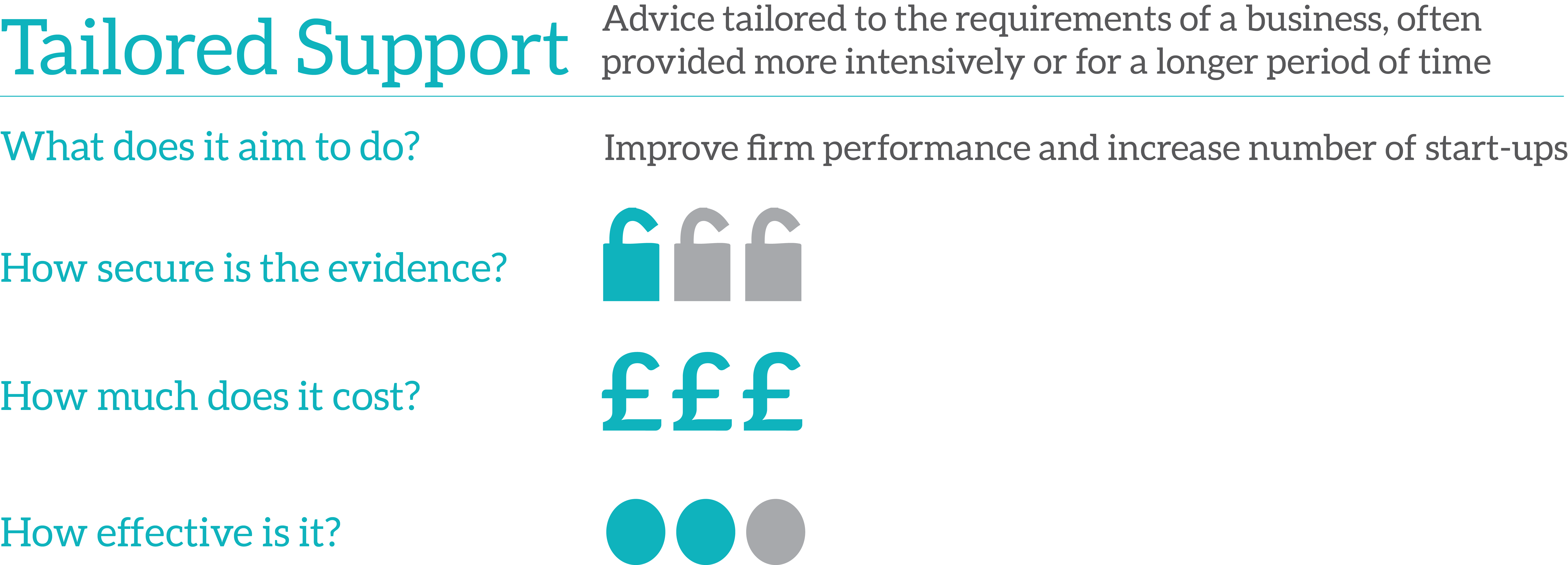 Business Advice Toolkit: Tailored Support | What Works